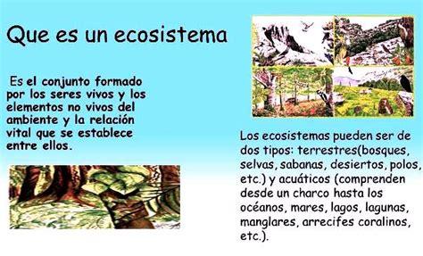 Qué es un ecosistema  para niños    Ecosistemas