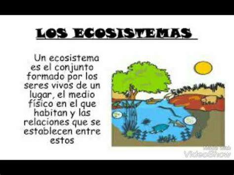 Que es un Ecosistema Y sus Elementos para niños de ...