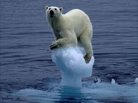 ¿Qué es y cómo nos afecta el cambio climático?   Las2orillas