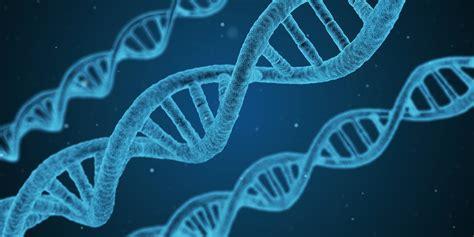 ¿Qué estudia la biología?  principales ramas    Saber es ...