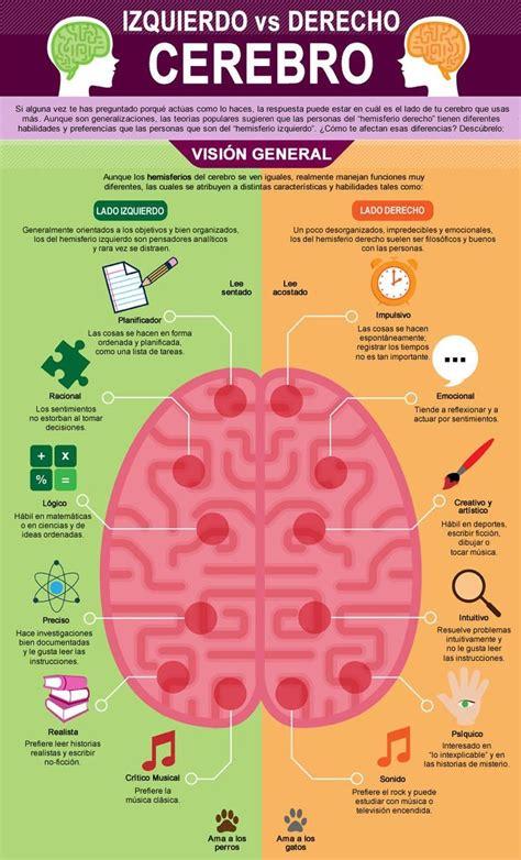 ¿Que hace cada hemisferio del cerebro?