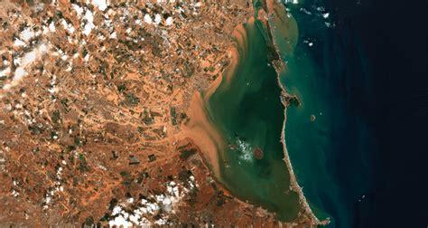 Qué pasa en el Mar Menor: miles de peces muertos en un ...