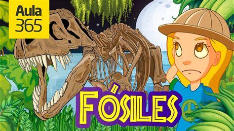 ¿Qué son los Fósiles? | Videos Educativos para Niños   YouTube