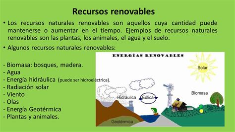 ¿Qué son los recursos renovables? ️ » Respuestas.tips