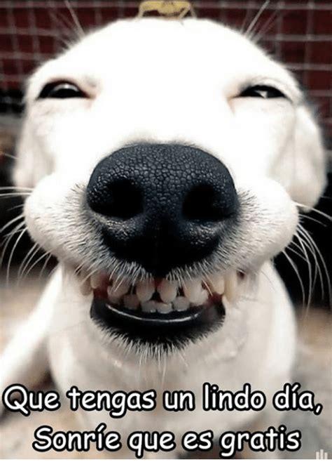 Que Tengas Un Lindo Dia Sonrie Que Es Gratis Un Lindo Aia ...