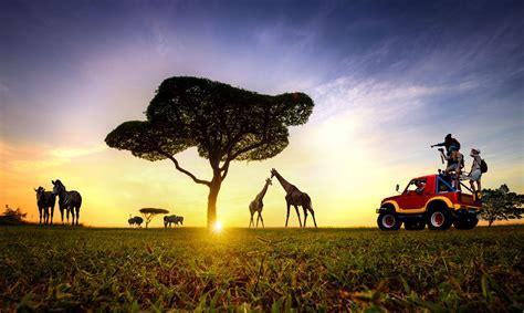 Qué ver en Kenia   10 lugares imprescindibles [Con imágenes]