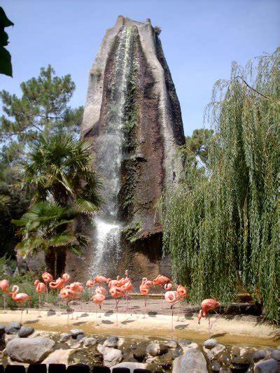 quelques photos d oiseaux du zoo de la palmyre   Blog de ...