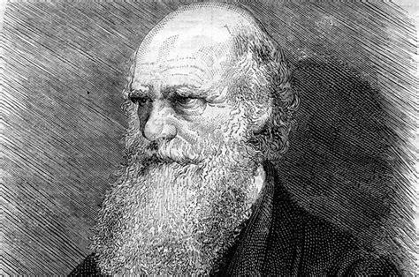 Quem foi Charles Darwin?   Biografia resumida, teoria ...