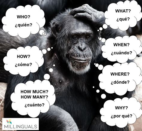 QUESTION WORDS AND STRUCTURES — Millinguals.com Academia ...