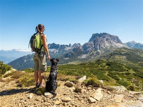 Quick Hike with Your Dog