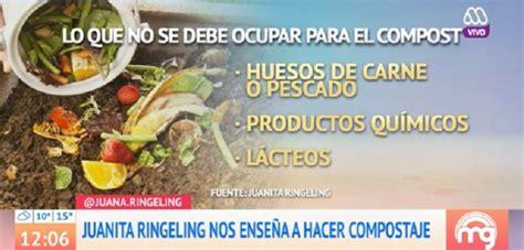 ¿Quieres ayudar al medio ambiente? Juanita Ringeling ...