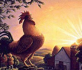 Quiero Contarte...: El canto del gallo