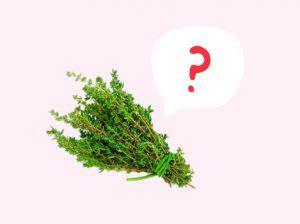 Quiz! Hierbas aromáticas en inglés