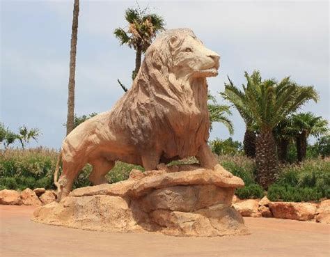 Rabat Zoo   Picture of Jardin Zoologique National de Rabat ...