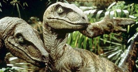 Ranking 'Jurassic Park' movies by the best Velociraptor ...