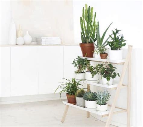 Rápidas y fáciles ideas para crear rincones con plantas y ...