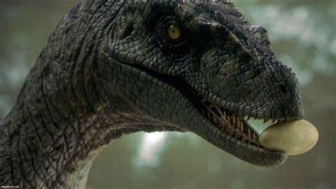 Raptor Dinosaur Jurassic Park   Dinosaurs/Jurassic Park ...