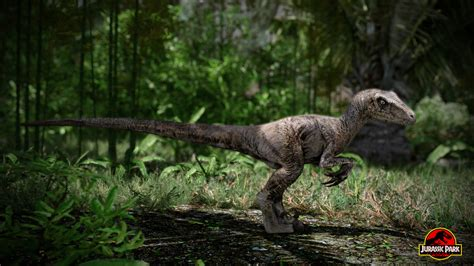 Raptor in game screenshot image   Jurassic Park: Aftermath ...