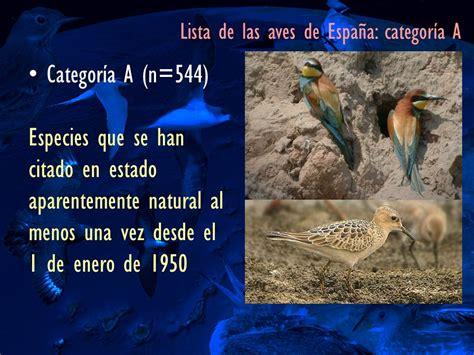 Rare Birds in Spain Blog: Lista de las aves de España 2012