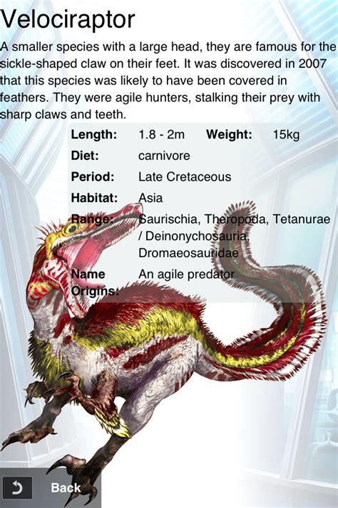 Rare Velociraptor | Prehistoric animals, Dinosaur facts ...