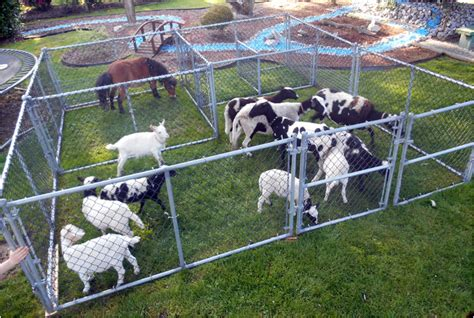 Rates Mobile Petting zoo pricing, packages and options