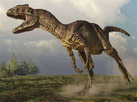 Re Fleshed  Dinosaur Reveals Peculiar Way Creature Ate ...