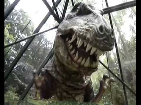 Real  Dinosaurs   YouTube