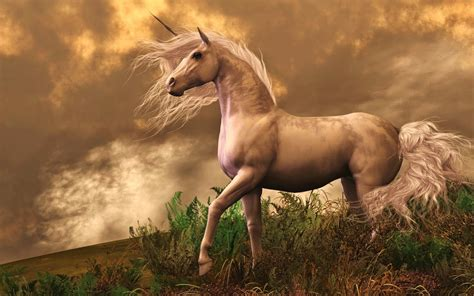 Real Unicorns Found    CuteUnicorn.Club