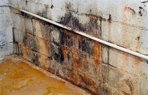 REC ROOMS 101: The Real Way to Prevent Dangerous Mold in ...