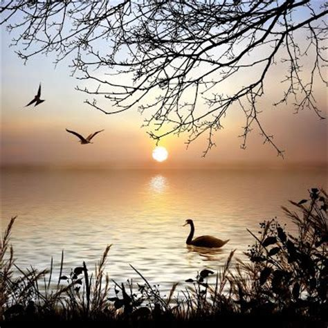Recopilación de imágenes y fotos bonitas con paisajes ...