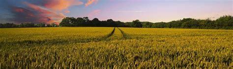 Registro de productos fitosanitarios: Todo lo que debes ...
