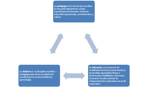 Relación entre la didáctica general, especial y otras ...