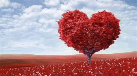 Relaciones de pareja: Frases de amor bonitas y originales ...