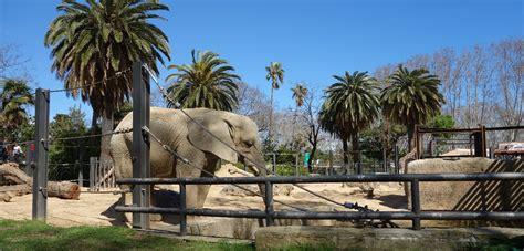 Relaxare de week end la Zoo Barcelona si Parc de la ...