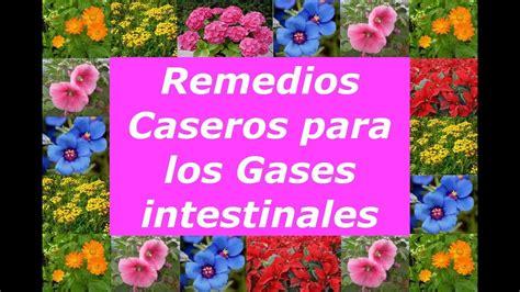 Remedios Caseros para la Flatulencia o Gases intestinales ...