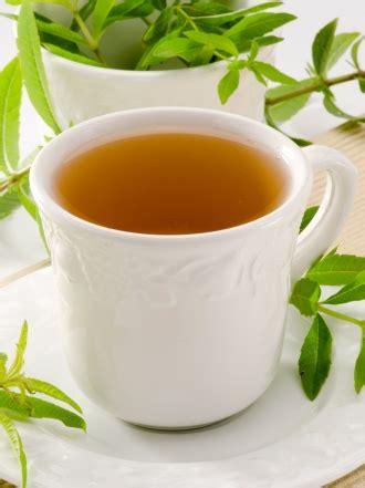 Remedios naturales para el insomnio: plantas que te ayudan ...