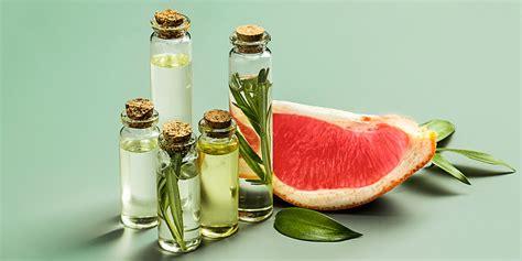 Remedios naturales para las hemorroides   Green Club