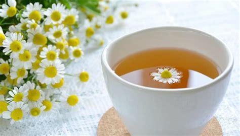 Remedios Para los Gases Estomacales ¡Soluciones Naturales ...