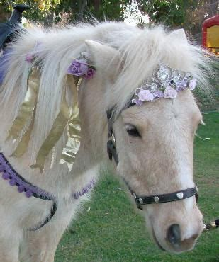 Rent a pony for your kids birthday party! Cute idea they ...