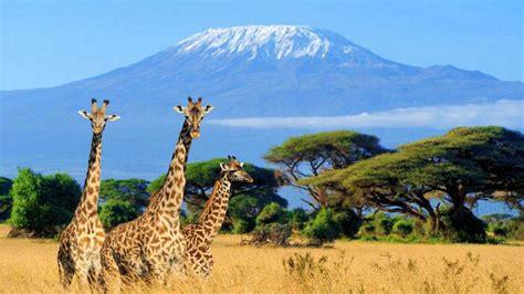 Resultado de imagen de kenia   Viajar a áfrica, Monte ...