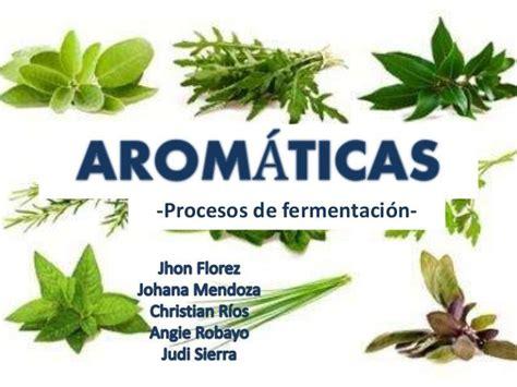 Resultado de imagen de plantas aromáticas nombres ...
