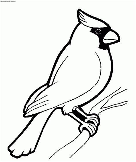 Resultat d imatges de pájaros para colorear e imprimir ...