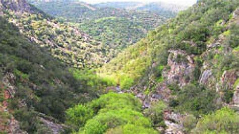 Riberas del Bosque mediterráneo