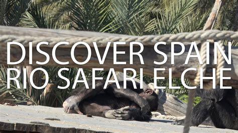 Rio Safari Elche   Elche   Discover Spain   November 2017 ...
