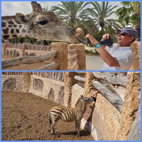 Rio Safari Elche ⋆ Eva & Malthe   Two adventurers on tour