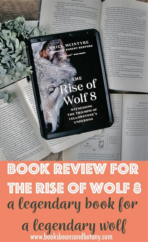 Rise of Wolf 8 – Review of Yellowstone s Wolf ...