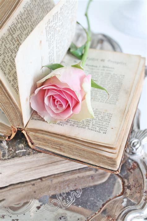 Rosa y libro  con imágenes  | Flores de libros