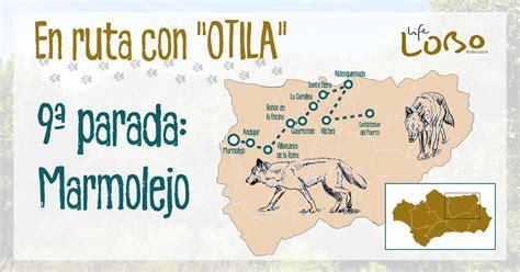 ruta 11   Life Lobo Andalucía