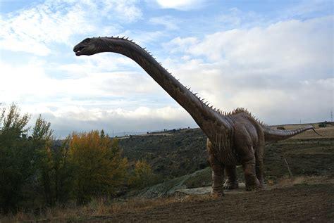 Ruta de las Icnitas, tras las huellas de los dinosaurios ...