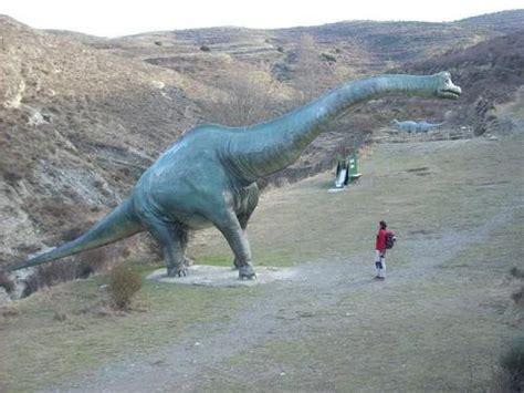 Rutas de dinosaurios de Enciso – Dinosaurios